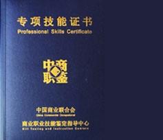 中国商业职业技能